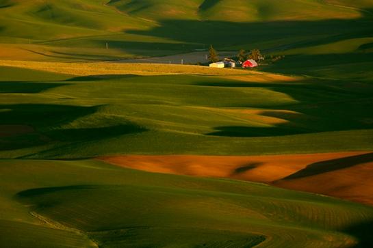 Farmland 600